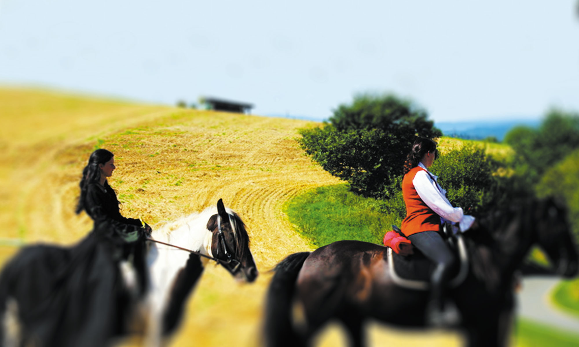 Mittelalterspektakel-integrative-Reitfreizeit-Verbindung-Pferd-Titelbild