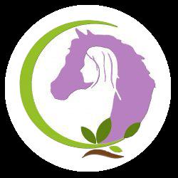 Verbindung-Pferd